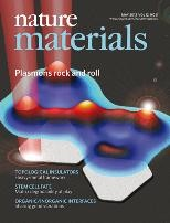 Information processing with 2D plasmonic states