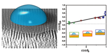 Wettability of suspended graphene monolayers
